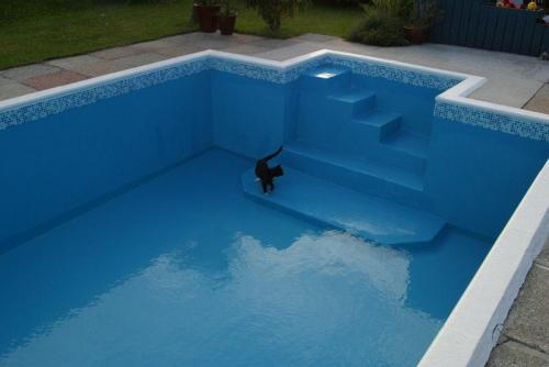 pool refurb (61)