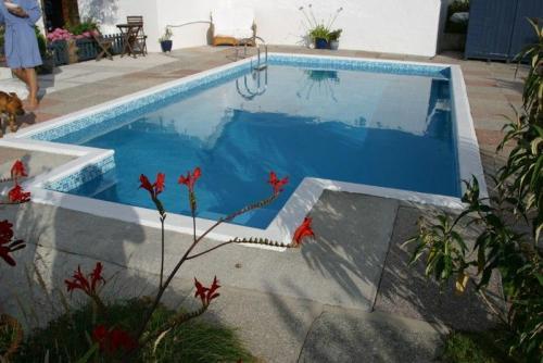 pool refurb (70)
