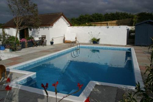 pool refurb (71)