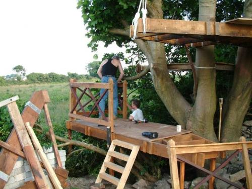 Treehouses & Decks